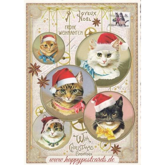 Frohe Weihnachten - Weihnachtskatzen - Tausendschön - Weihnachtskarte