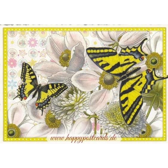 Schmetterlinge - gelb