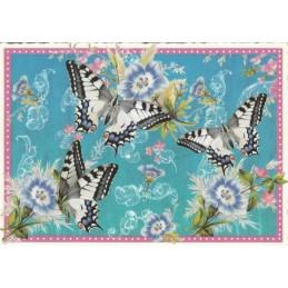 Schmetterlinge - blau