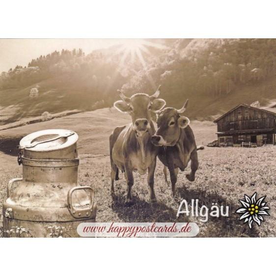Cows in Allgaeu - Viewcard