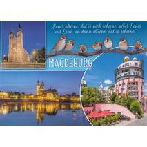 Magdeburg - Sparrows - Viewcard