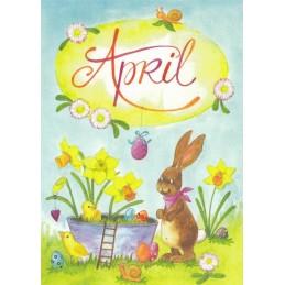 April - Narzissen - Monats-Postkarte