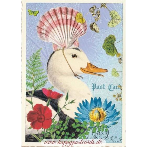 Duck - Tausendschön - Postcard