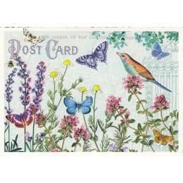 Wiese mit Schmetterlingen - Tausendschön - Postkarte