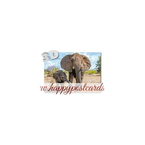 3D Elephants - Postcard