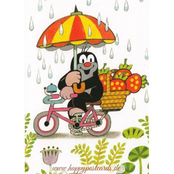 Der Maulwurf mit Fahrrad im Regen - Postkarte