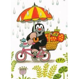 The Mole with a bike in the Rain - Postcard