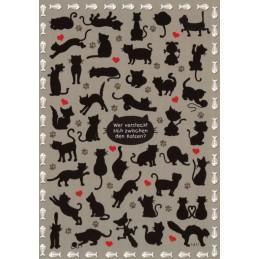 Wer versteckt sich zwischen den Katzen? - Postkarte
