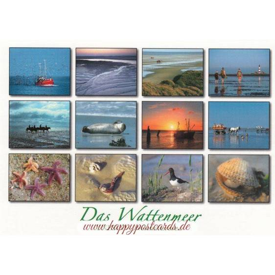 Wadden Sea 3 - Viewcard