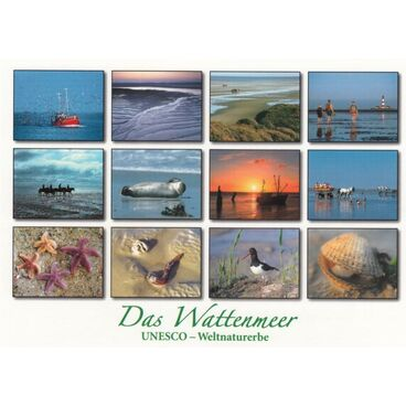 Wadden Sea 3 - Viewcard