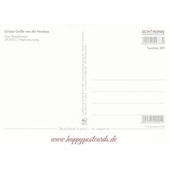 Wattenmeer 3 - Ansichtskarte