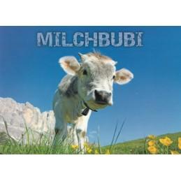 Milchbubi - Ansichtskarte