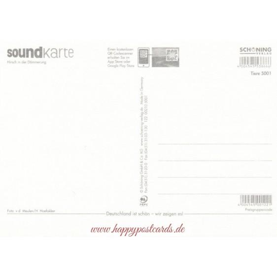 Hirsch - Sound-Karte