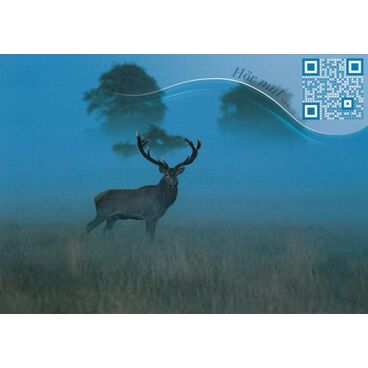 Stag - Sound-Card