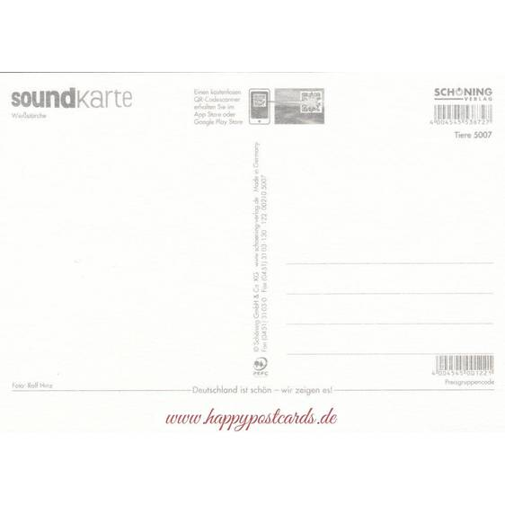 White storck - Sound-Card