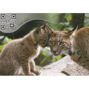 Lynx - Sound-Card