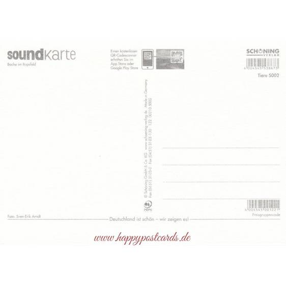 Bache im Rapsfeld - Sound-Karte