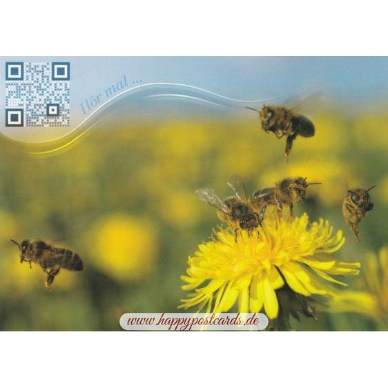 Bees - Sound-Card