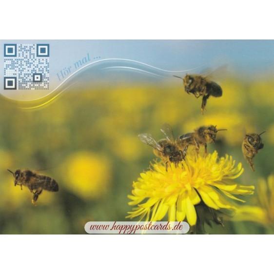 Bienen auf Löwenzahnblüte - Sound-Karte
