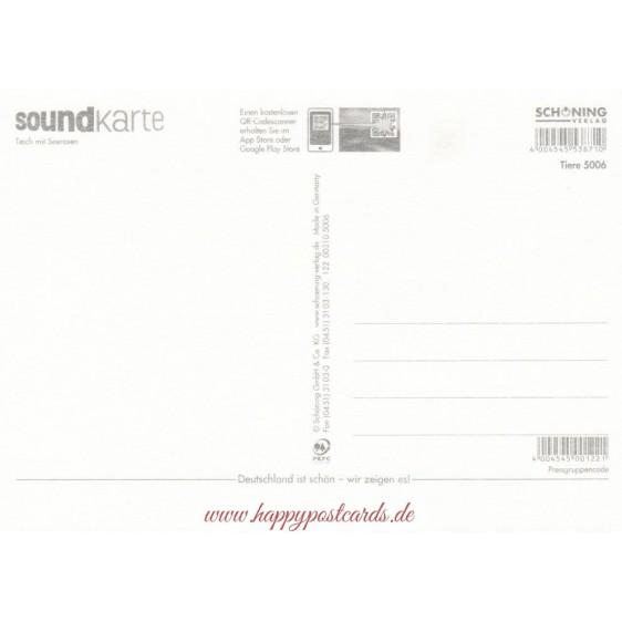 Teich mit Seerosen - Sound-Karte