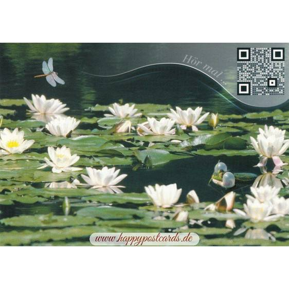 Lily Pond - Sound-Card
