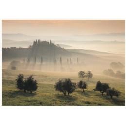 Tuscan Landscape - Postcard