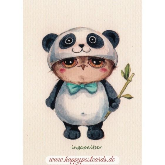 Panda Owl -Paltser - Postcard